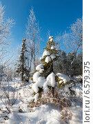 Живописная природа на севере России зимой. Стоковое фото, фотограф Владимир Ковальчук / Фотобанк Лори