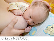 Купить «Грудное вскармливание младенца», фото № 6587435, снято 11 октября 2014 г. (c) Ирина Борсученко / Фотобанк Лори