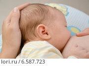 Купить «Кормление младенца грудью», фото № 6587723, снято 11 октября 2014 г. (c) Ирина Борсученко / Фотобанк Лори