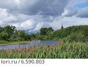 Купить «Речка Лютиха», фото № 6590803, снято 23 июня 2014 г. (c) Павел Москаленко / Фотобанк Лори