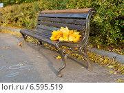 Купить «Желтые листья на пустой скамейке», фото № 6595519, снято 19 октября 2014 г. (c) Максим Топчий / Фотобанк Лори