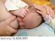 Купить «Маленький ребенок гладит младенца по голове. Грудное вскармливание», фото № 6604991, снято 11 октября 2014 г. (c) Ирина Борсученко / Фотобанк Лори