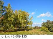 Купить «Москва, парк в Коломенском осенью», фото № 6609135, снято 28 сентября 2014 г. (c) Овчинникова Ирина / Фотобанк Лори