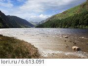 Купить «Горный Национальный парк Виклоу, Ирландия», фото № 6613091, снято 21 августа 2014 г. (c) Юлия Машкова / Фотобанк Лори