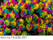 Огромный букет разноцветных роз. Стоковое фото, фотограф Ольга Сейфутдинова / Фотобанк Лори