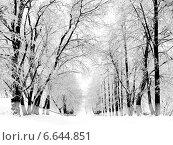 Купить «Зимний снежный парк», фото № 6644851, снято 3 декабря 2012 г. (c) ElenArt / Фотобанк Лори