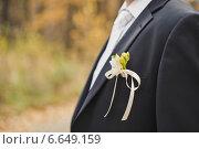 Бутоньерка в кармане жениха. Стоковое фото, фотограф Алёна Замотаева / Фотобанк Лори