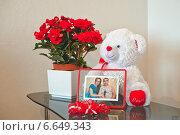 Любимая игрушка (2013 год). Редакционное фото, фотограф Алёна Замотаева / Фотобанк Лори