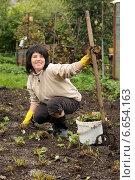 Купить «Женщина пропалывает грядку на огороде», эксклюзивное фото № 6654163, снято 31 августа 2013 г. (c) Юрий Морозов / Фотобанк Лори