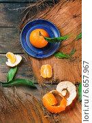 Купить «Мандарин на голубой тарелке», фото № 6657967, снято 28 апреля 2013 г. (c) Natasha Breen / Фотобанк Лори