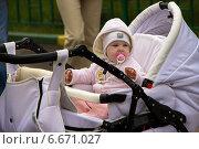 Малыш (2013 год). Редакционное фото, фотограф Александр / Фотобанк Лори