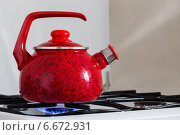 Tea kettle with boiling water on gas stove. Стоковое фото, фотограф Майя Крученкова / Фотобанк Лори
