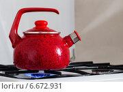 Купить «Tea kettle with boiling water on gas stove», фото № 6672931, снято 11 ноября 2014 г. (c) Майя Крученкова / Фотобанк Лори