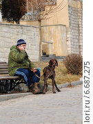 Прогулка (2014 год). Редакционное фото, фотограф Дмитрий Балибардин / Фотобанк Лори