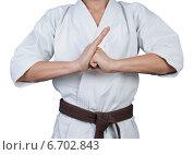 Приветствие в боевых искусствах. Стоковое фото, фотограф Александр Гречин / Фотобанк Лори