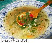 Тарелка овощного супа с деревянной расписной ложкой. Стоковое фото, фотограф Irina / Фотобанк Лори