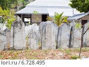 Купить «Старые захоронения в столице Мальдив Мале», фото № 6728495, снято 12 февраля 2013 г. (c) Сергей Дубров / Фотобанк Лори