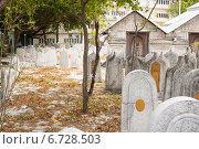 Купить «Памятники из кораллового камня на старом кладбище в Мале, столице Мальдив», фото № 6728503, снято 12 февраля 2013 г. (c) Сергей Дубров / Фотобанк Лори