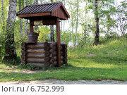 Купить «Деревянный колодец у берёз», фото № 6752999, снято 24 июля 2012 г. (c) Марина Орлова / Фотобанк Лори