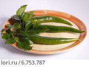 Перец острый зеленый. Стоковое фото, фотограф Анна Милованова / Фотобанк Лори
