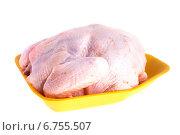 Купить «Сырая курица на белом фоне», фото № 6755507, снято 24 ноября 2014 г. (c) Литвяк Игорь / Фотобанк Лори