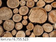 Купить «Поленница. Стопка аккуратно сложенных дров», фото № 6755523, снято 4 сентября 2014 г. (c) Литвяк Игорь / Фотобанк Лори