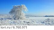 Купить «Зимний пейзаж», фото № 6760971, снято 3 декабря 2014 г. (c) александр жарников / Фотобанк Лори