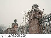 Каменный забор в инее. Стоковое фото, фотограф Екатерина Ярославовна Мостовая / Фотобанк Лори