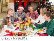 Купить «Extended family toasting at christmas dinner», фото № 6786819, снято 27 августа 2014 г. (c) Wavebreak Media / Фотобанк Лори