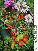 Овощной натюрморт. Стоковое фото, фотограф Мельникова Надежда / Фотобанк Лори