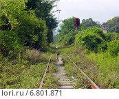 Купить «Абхазская железная дорога. Район Агудзеры», фото № 6801871, снято 9 августа 2006 г. (c) Евгений Ткачёв / Фотобанк Лори