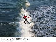 Серфер на Балтийском море в Зеленоградске Калининградской области. Стоковое фото, фотограф Ксения Семенова / Фотобанк Лори