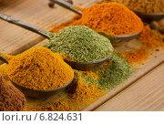 Selection of spices . Стоковое фото, фотограф Tatjana Baibakova / Фотобанк Лори