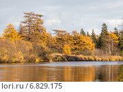 Осенний пейзаж на реке Вал, Сахалин (2013 год). Стоковое фото, фотограф Алексей Шматков / Фотобанк Лори