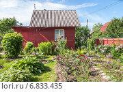 Купить «Домик на дачном участке», эксклюзивное фото № 6833435, снято 14 июня 2014 г. (c) Алёшина Оксана / Фотобанк Лори