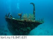 Купить «Затонувшее судно на морском дне», фото № 6841631, снято 11 февраля 2013 г. (c) Сергей Дубров / Фотобанк Лори