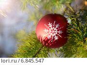 Купить «Елочная игрушка», фото № 6845547, снято 27 декабря 2014 г. (c) Руслан Митин / Фотобанк Лори