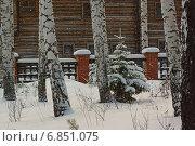 Снегопад в берёзовой роще. Стоковое фото, фотограф Ирина Черкашина / Фотобанк Лори