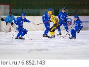 Купить «Хоккей с мячом. Бушуев ведет мяч», фото № 6852143, снято 12 декабря 2014 г. (c) Alexander Mirt / Фотобанк Лори