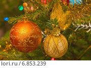 Купить «Украшенная новогодняя ёлка», фото № 6853239, снято 1 января 2014 г. (c) Алексей Назаров / Фотобанк Лори