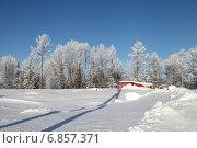 Купить «После снегопада в тайге. Дальний Восток», эксклюзивное фото № 6857371, снято 1 января 2015 г. (c) Валерий Акулич / Фотобанк Лори