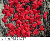 Купить «День Святого Валентина. Красные атласные сердца на деревянном фоне», фото № 6861727, снято 27 декабря 2014 г. (c) Laimdota Grivane / Фотобанк Лори