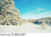 Купить «Зимний пейзаж в лесу», фото № 6862087, снято 2 июня 2013 г. (c) Сергей Девяткин / Фотобанк Лори