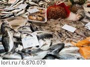 Купить «various raw fresh fish on market counter», фото № 6870079, снято 19 января 2019 г. (c) Яков Филимонов / Фотобанк Лори