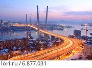 Купить «Вечерний вид моста во Владивостоке через залив Золотой Рог», фото № 6877031, снято 9 января 2015 г. (c) Овчинникова Ирина / Фотобанк Лори
