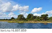 Аландские острова в Балтийском море (2014 год). Стоковое фото, фотограф Валерия Попова / Фотобанк Лори
