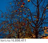 Красные и золотые новогодние шарики на ветках деревьев. Красная площадь. Ранний вечер. Москва (2015 год). Стоковое фото, фотограф E. O. / Фотобанк Лори