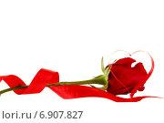 Красная роза на белом фоне с красной лентой в форме сердца. Стоковое фото, фотограф Альховик Людмила / Фотобанк Лори