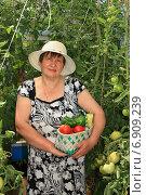 Дачница в теплице с помидорами. Стоковое фото, фотограф Мельникова Надежда / Фотобанк Лори
