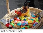 Купить «Разноцветный яйца в корзинке, приготовленные для освящения. Троицкий Рязанский монастырь», эксклюзивное фото № 6911179, снято 23 апреля 2010 г. (c) lana1501 / Фотобанк Лори